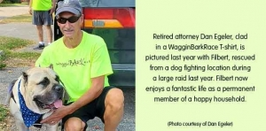 Paws for Thought: Attorney to run 24 races in a day to support dog rescue charities